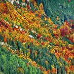 Urlaub in der schönsten Jahreszeit - Goldener Herbst
